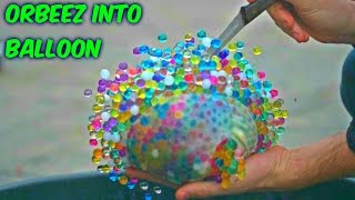 What Happens If You put Orbeez into Balloon?