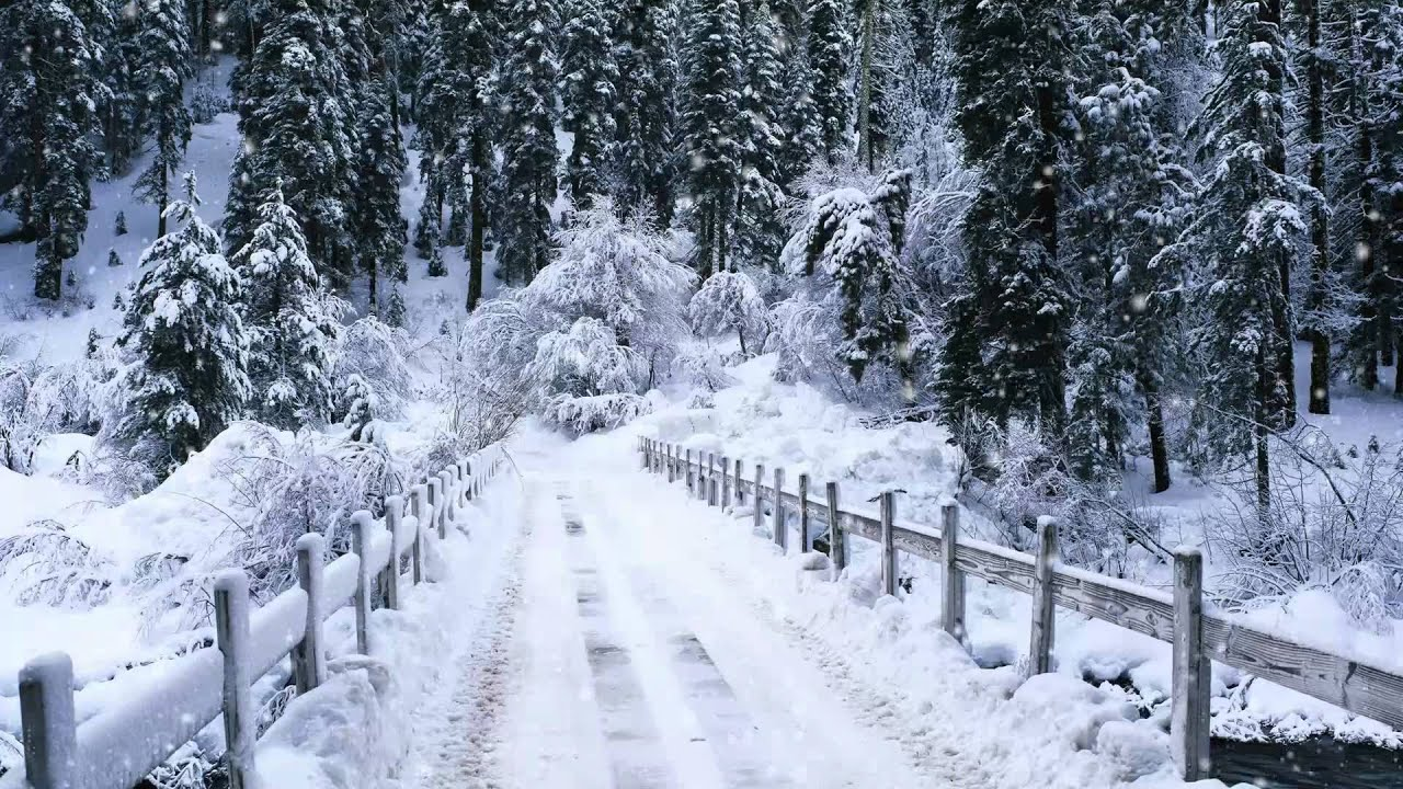 Snow Falling, Windows 7 Video Background, DreamScene (Adobe after