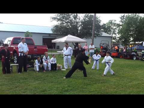 Tae Kwon Do demonstration at Jefferson County Fair Image 1