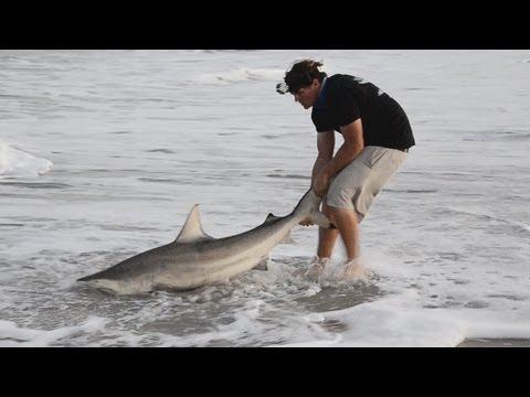 Shark Fishing from the Jetty - ft. InfinityFishingTeam