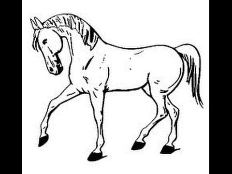 Como dibujar un caballo en paint youtube for Silla facil de dibujar
