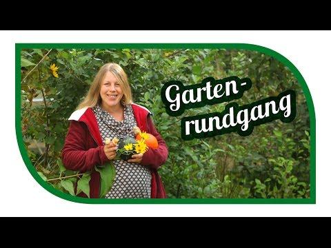 Gartenrundgang Oktober im Gemüsegarten | Garden Tour| Selbstversorgung im Herbst