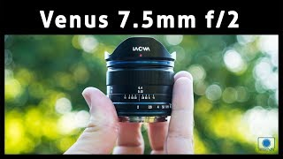 Venus Laowa 7.5mm f/2 MFT  'Compact Dreamer' Lens Review