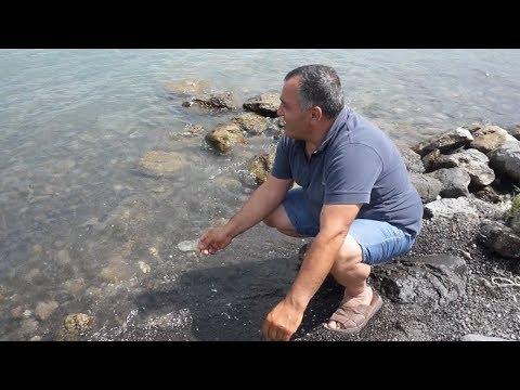 """Приготовленная Жоржем рыба """"Сига"""" на берегу озера Севан"""