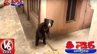 Exclusive Visuals | Bear Hulchul At Karimnagar BSNL Office | Teenmaar News