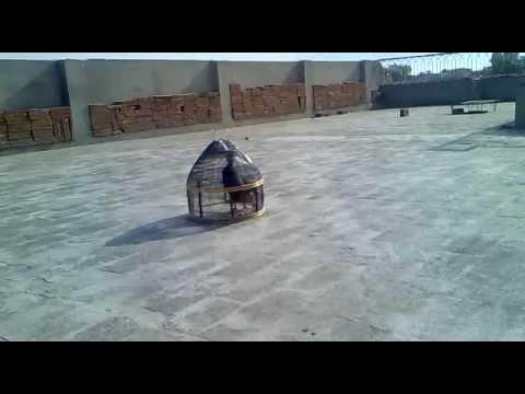 Kala Teetar video