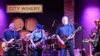 Los Lobos - Wicked Rain 12-20-15 City Winery, NYC
