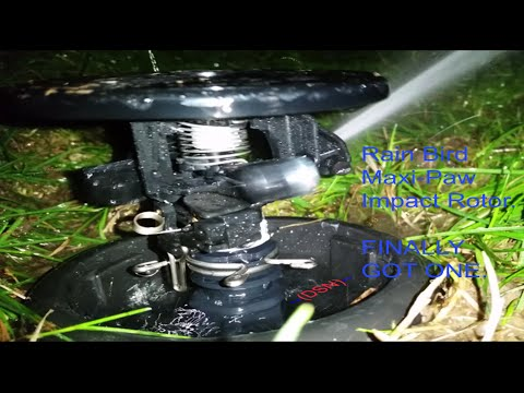 how to install a rain bird 1804 sprinkler head how to save money and do it yourself. Black Bedroom Furniture Sets. Home Design Ideas