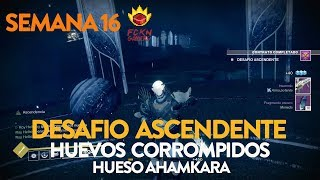 DESTINY 2.- Desafio Ascendente + Hueso Ahamkara + Huevos (Semana 16)