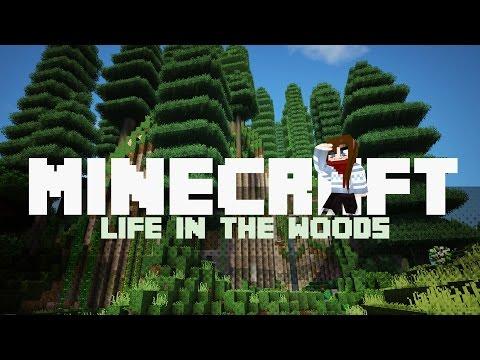 Der Weg zum perfekten KUCHEN! | #045 ► Life in the Woods