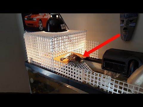 DIY BASKING AREA FOR TURTLES!!! (w/ eggcrate)