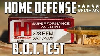 Hornady .223 53gr V-MAX Ammunition for Personal Defense