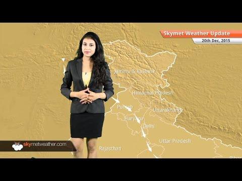 Weather Forecast for December 20: Light Rain in Tamil Nadu, Dense fog in East India