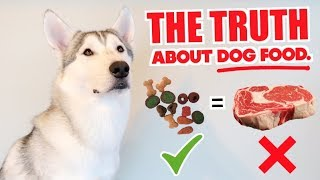 What Do You Feed A Husky? - THE TRUTH ABOUT PET FOOD/DOG FOOD!