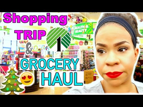 FOLLOW ME AROUND THE DOLLAR TREE & DOLLAR TREE FOOD HAUL | WHAT'S NEW AT THE DT