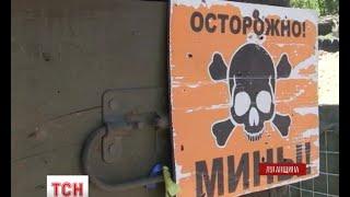 На Луганщині диверсійні групи бойовиків щодня підступають до українських позицій - (видео)