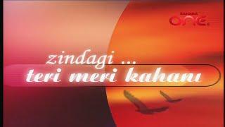 Zindagi... Teri Meri Kahani : Title 1   Sahara One
