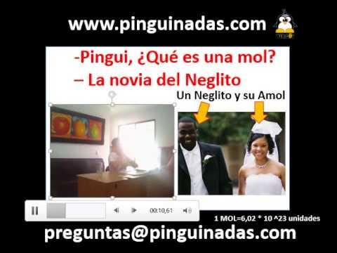 Pingui, ¿Qué es una Mol? - La novia del Neglito...