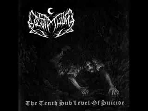Leviathan - Fucking Your Ghost In Chains Of Ice