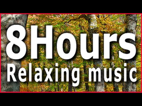 8Hours Relaxing music(Acoustic Guitar) Sleep,Study,Meditation,Reiki,Zen,Yoga
