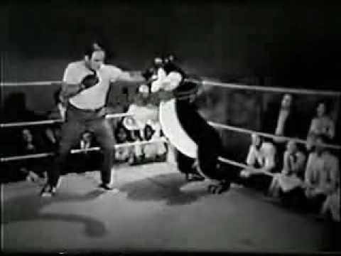Vintage Boxing Reel