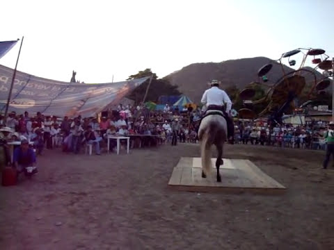 CONCURSO CABALLOS BAILADORES C.D ALTAMIRANO EXPO 2010