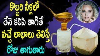కొబ్బరి నీళ్లలో తేనె కలిపి తాగితే వచ్చే లాభాలు తెలిస్తే రోజు తాగుతారు |  Coconut Water With Honey