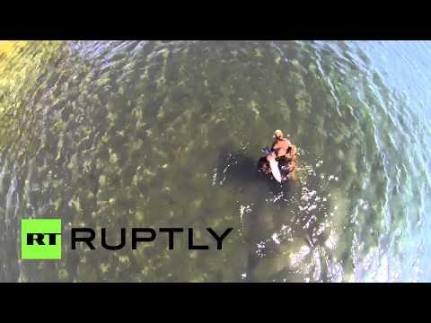 Medvék halásznak (Kamcsatka, Oroszország)