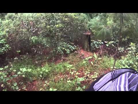 Zitácuaro downhill octa y pascual