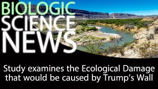 Science News - Study examines the Ecological Damage that would be caused by Trump's Wall