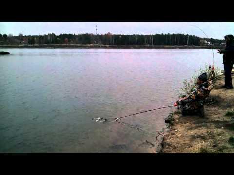 рыбалка песчаный бисерово