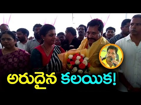 YSRCP MLA Roja Honours Minister Amarnath Reddy | Latest Political Updates | IndionTvNews