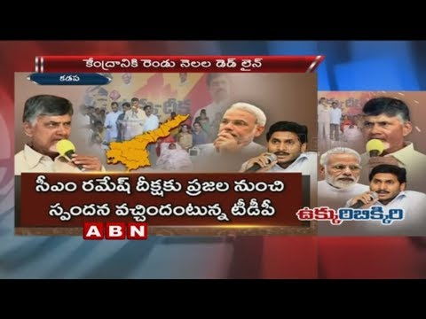CM Chandrababu sets deadline for Central Govt Over Kadapa Steel Plant