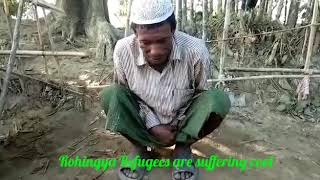 Donors distributed Jackets & Shirts to the needy Rohingya Refugees