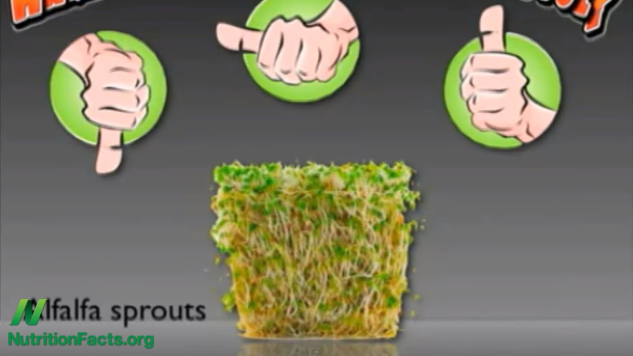 Don't Eat Raw Alfalfa Sprouts