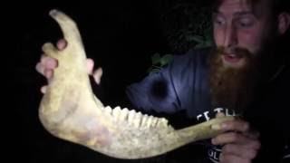 Levis Monster Part 4 (Jaw Bone)