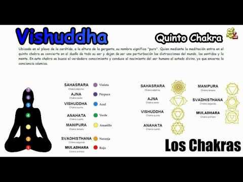Los Siete Chakras Principales - Los Chakras y su Significado - Las chakras del cuerpo Humano