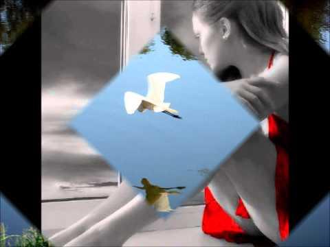 CanÇÃo De Amor - Teresa Valesca video