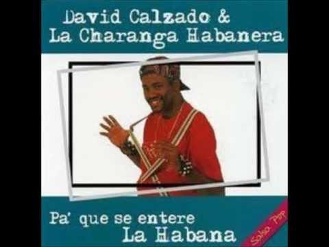 David Calzado - Amor de subasta