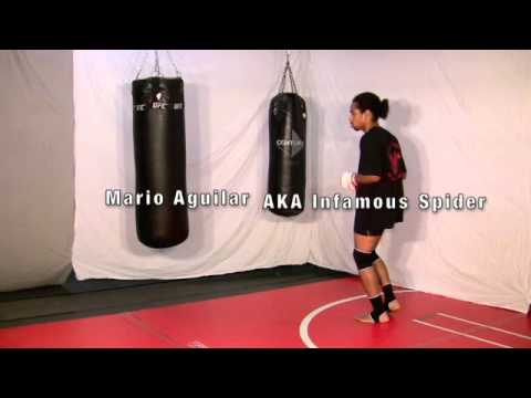 IMMA Kicks - Part 9 of 9 - MMA Fight Training Mario Infamous Spider Aguilar Image 1