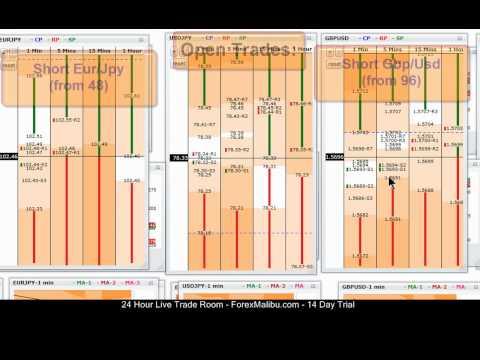 Forex grid trader test