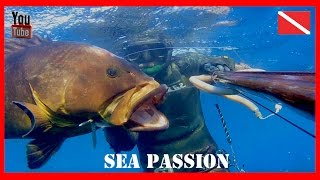 Spearfishing - Sea Passion