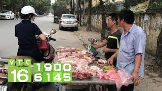 Tẩy chay thịt lợn đẩy nông dân đến đường cùng | VTC16
