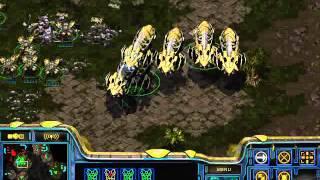 StarCraft Brood War [FPVOD] Bruce vs Strelok