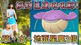【精靈寶可夢GO】POKEMON GO|清潔活動獎勵開始!!草水地面系寶可夢星塵3倍!抓到色違吼吼鯨啦~