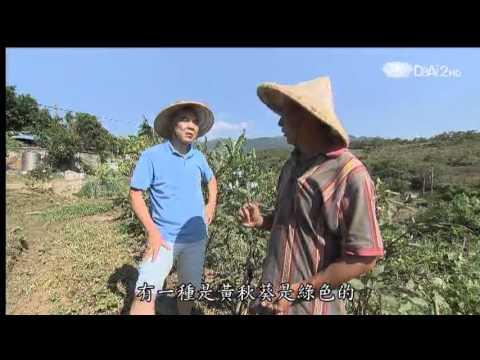 蔬果生活誌-20131102 手機教你多吃蔬菜