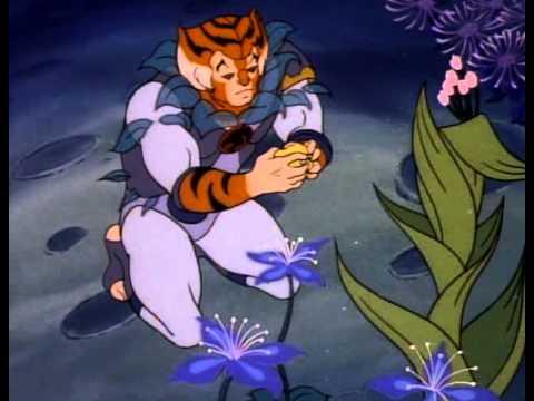 Tygra Thundercats Wiki on Learn And Talk About Tygra  Thundercats   Fictional Adoptees