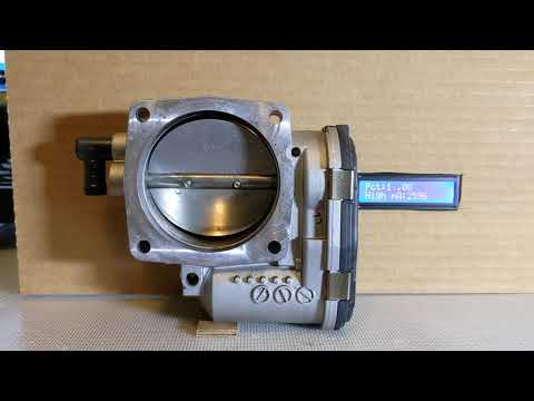 Bosch Throttle Body Check