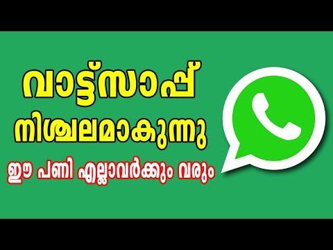 Crash Whatsapp || എങ്ങനെ whatsapp നിശ്ചലം ആകുന്നു അറിയേണ്ടേ ? BY COMPUTER AND MOBILE TIPS