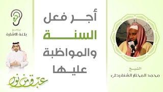 عبق من نور 6 | أجر فعل السنّة و المواظبة عليها | الشيخ محمد الشنقيطي